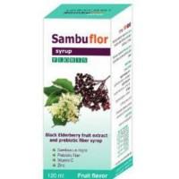 Экстракт черной бузины с пробиотиком и цинком, Extract of black elderberry with probiotic and zinc Sambuflor Syrup 120 ml